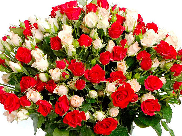 Букет из роз: основные типы и принципы формирования