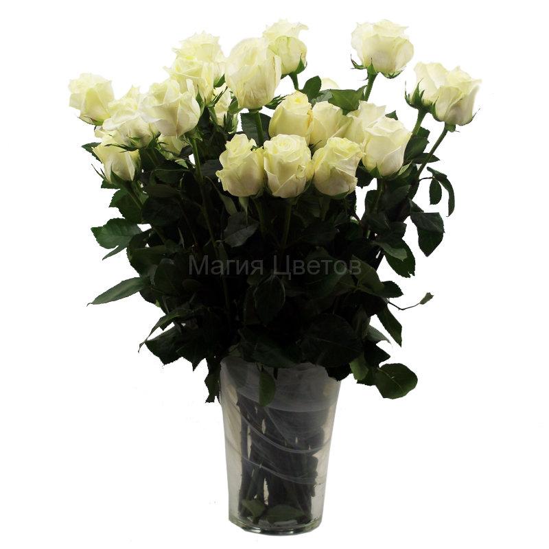 Живые цветы оптом казань где купить цветы в ларнаке
